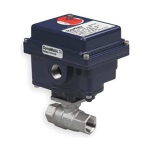 Ball Valve, Electric, 3 In Npt, Ss