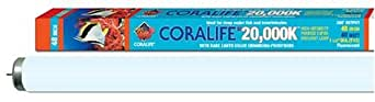 Coralife Energy Savers ACL02012 20,000 Kelvin flouorescent, 32w T8 Bulb 48-Inch
