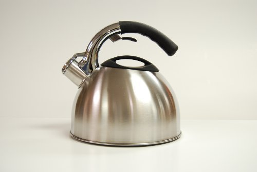 Creative Home Ellipse 2.8 qt. Whistling Tea Kettle by Creative Home (Ellipse Tea Kettle compare prices)