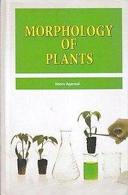 Morphology Of Plants