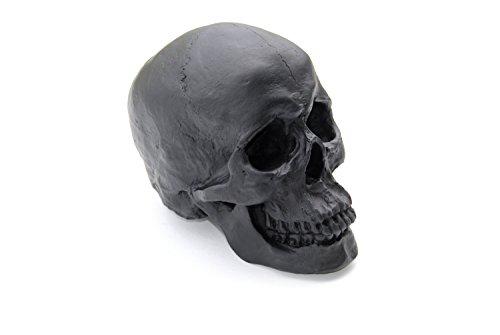 Large - Life Size Human Anatomy - Faux Matte Black Human Skull - Resin Home Decor - Table Top Skeleton Head SK17