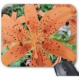 tiger-lily-in-full-bloom-mouse-pad-personalized-mouse-pads-tiger-mousepad-anti-slip-mousepads