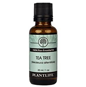 Tea Tree 100% Pure Essential Oil - 30 ml