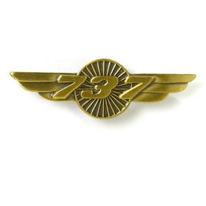 Awarded to Members who are promoted to Senior Flight Officer & have completed 40 hours
