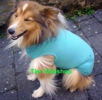 dog-cat-body-bitte-auswahlen-l-rude-collie-appenz-chow-chow