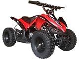 Big Toys USA MotoTec 24v Mini Quad v2 - Red