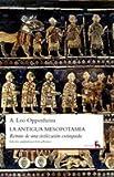 img - for La Antigua Mesopotamia / The Ancient Mesopotamia (Spanish Edition) book / textbook / text book