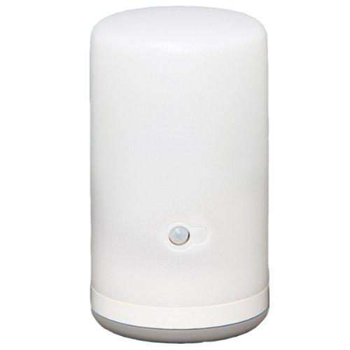 アイリスオーヤマ 乾電池式LEDセンサーライト BSL-10L
