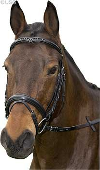 Replacement crown part bridle