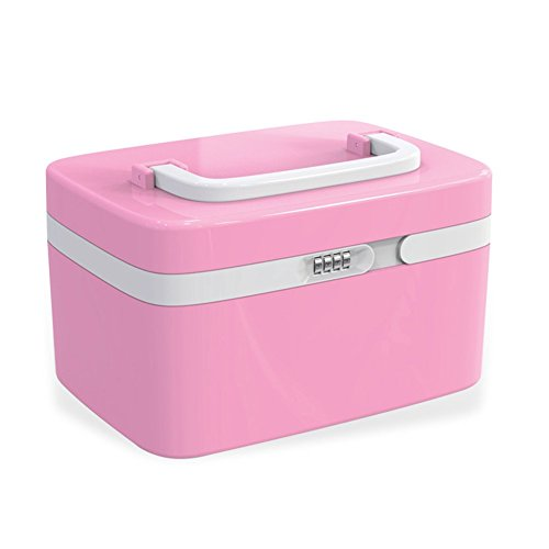 evertop-professional-abs-large-combination-lock-cosmetic-organiser-makeup-storage-container-travel-b