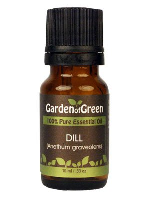 Dill Essential Oil (100% Pure and Natural, Therapeutic Grade) from Garden of Green