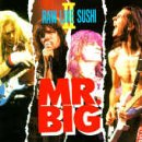 Mr. Big - Raw Like Sushi II - Zortam Music