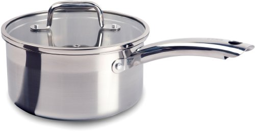 T-fal C81124 Elegance Stainless Steel Dishwasher Safe 3-Quart Source Pan with Glass Lid Cookware, Silver
