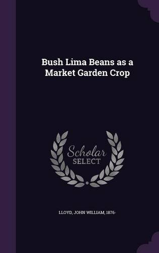 bush-lima-beans-as-a-market-garden-crop