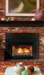 Direct Vent Fireplace Insert DV35IN33LN - Natural Gas (Gas Fireplace Empire compare prices)