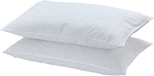 amazonbasics-microfibre-pillow-50x75-cm-pack-of-2