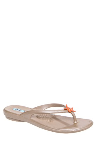 Eloise Jelly Flat Thong Sandal