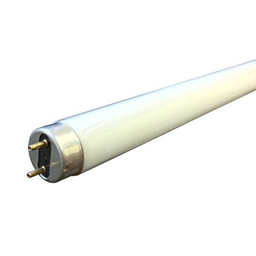 sylvania-16-w-t8-leuchtstoffrohren-720-mm-exc-pins-kariert-lange-sorgfaltig