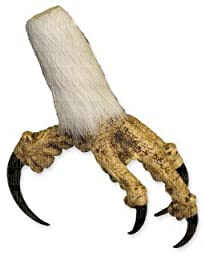 Bald Eagle Foot with feathers - closed (Teaching Quality Replica)