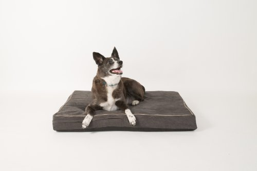 Washable Dog Beds India
