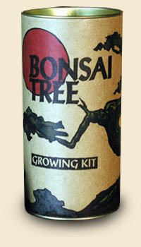 Bonsai Tree Growing Kit - Japanese Black Bansai Trees - Grow Bansais from Seed To Saplings - Kit Includes Seeds, Instructions, More.