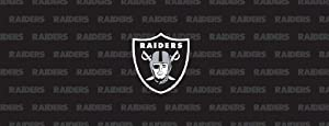 Oakland Raiders Team Auto Rear Window Decal