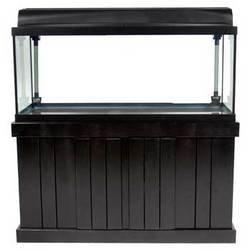 Marineland Majesty Stand - Black 48INX13IN