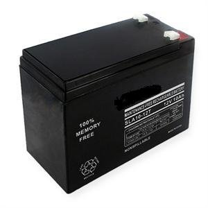 12 Volt 10 Ah Rechargeable Battery [Electronics]