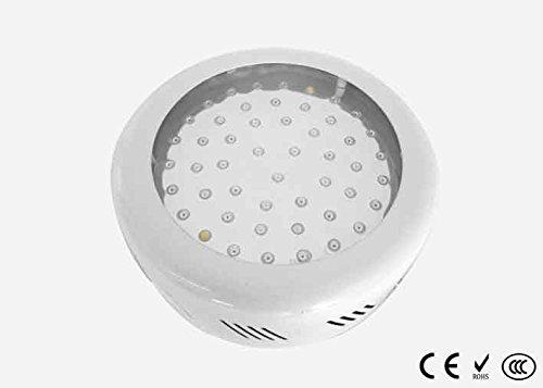 Ecosort®50x1Watt 7Band UFO Full Spectrum LED