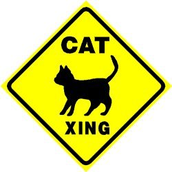 CAT CROSSING sign * street pet animal caution