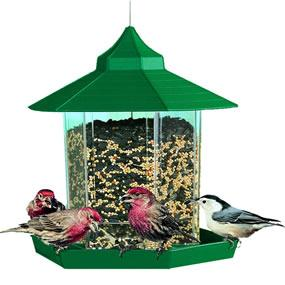 Wrap-around seed tray provides plenty of space to perch and eat