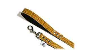 Buddy Belts Fancy Collection Leather Accent Pet Leash, 3/4-Inch by 4-Feet, Bamboo