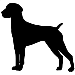 Amazon.com - German Short-hair Pointer Dog Decal Sticker