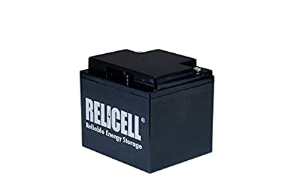 Relicell 12V 45AH UPS Battery