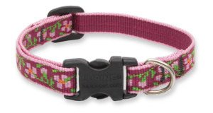 Lupine Adjustable Safety Collars for Cats - 1/2
