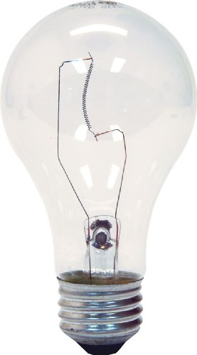 GE Lighting 97490 60-Watt 780-Lumen A19 Light Bulb, Crystal Clear, 2-Pack
