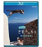 岩合光昭の世界ネコ歩き エーゲ海の島々(ポストカード付)