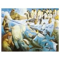 Jumbo-Polar-Regions-1500-Piece-Jigsaw-Puzzle