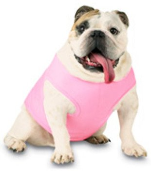 Doggie Skins Baby Rib Tank - Pink (2Xl) - 3902 Doggie Skins Baby Rib Tank : Pink (2Xl) Recruit Your Best Friend To Carry Your Logo. 100% Combed Ringspun Cotton (Heather Is 90/10) 1X1 Baby Rib 5.8-Oz.