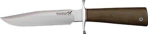Knife Sharpener Best