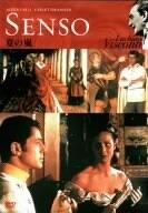 夏の嵐 [DVD]