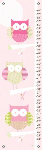 Oopsy Daisy Three Little Owls Growth Chart by Patchi Cancado, 12 by 42-Inch
