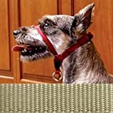 PetSafe Gentle Leader Headcollar, X-Large Large, Fawn