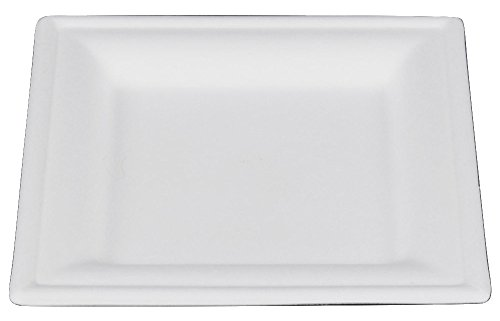 Square Heavy Duty Disposable Plate Compostable Made From  sc 1 st  Castrophotos & Heavy Duty Paper Plates - Castrophotos