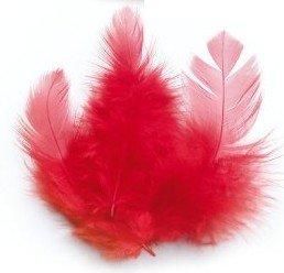 Piume di gallo 10 cm - rosso