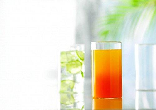 Borosil社 ヴィジョングラス Vision Glass, 295ml, 6コセット