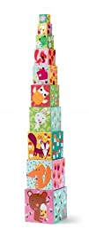 Djeco  Forest Animals Nesting   Stacking Cubes