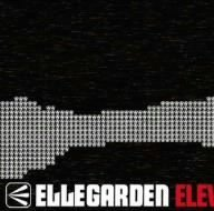 ELEVEN FIRE CRACKERS