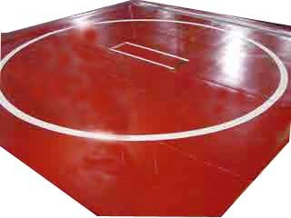 """Wrestling Mat - New, 10'x10' (Two 5'x10' Pieces), Mat:Light Gold, Markings:Red, 1"""""""