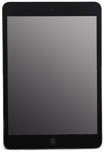 Apple iPad Mini MD528LL/A (16GB, Wi-Fi, Black)